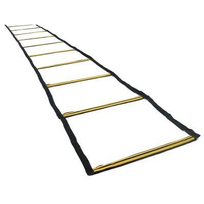 rhino-speed-ladder