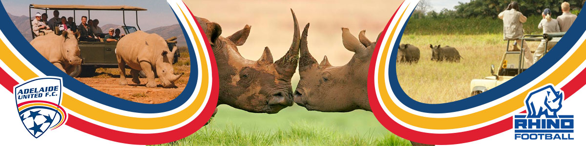 trip-to-africa-rhino-football